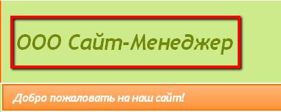 Название компании, отображающееся на сайте