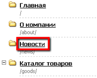 Название раздела в структуре сайта